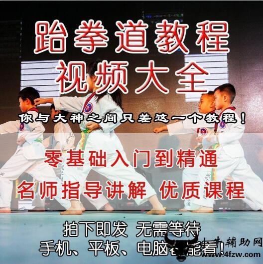 淘宝购买的跆拳道习武必备教程