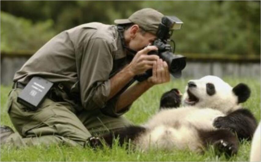 价值几千的职业摄影师系列教程